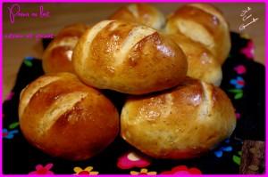 pains lait citron-pavot j'ai le coeur gourmandise