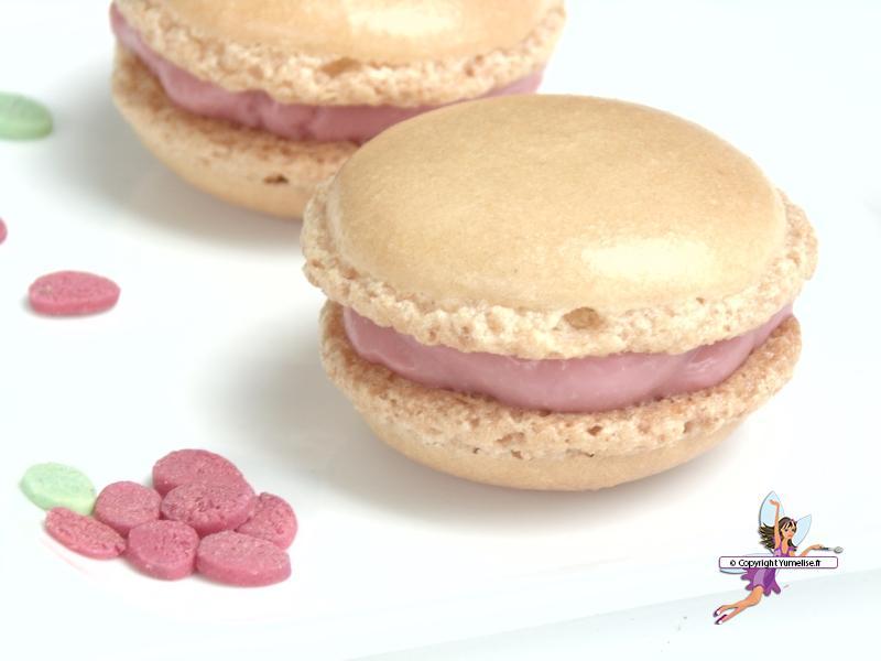 macarons vanille framboise 1