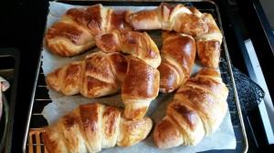 croissants aud rey