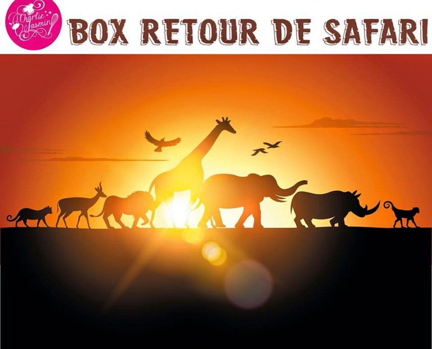 box retour de safari