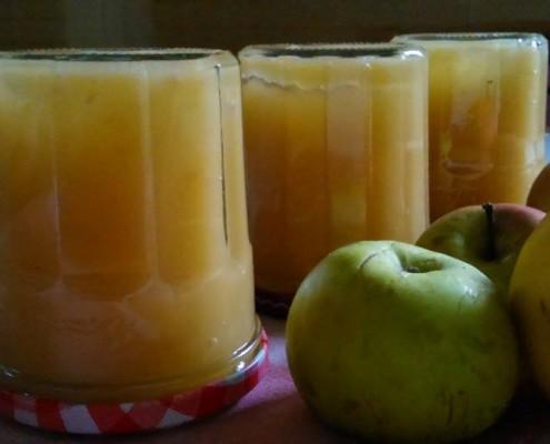 compote de pommes virginie rouaix