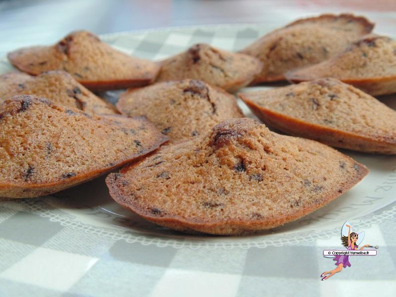 madeleines chocolat 1