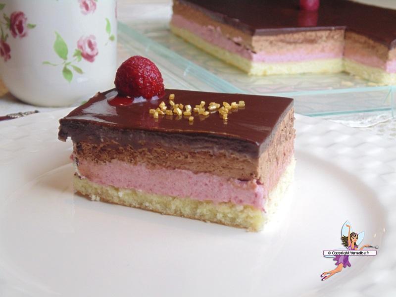 chocolat framboise 2