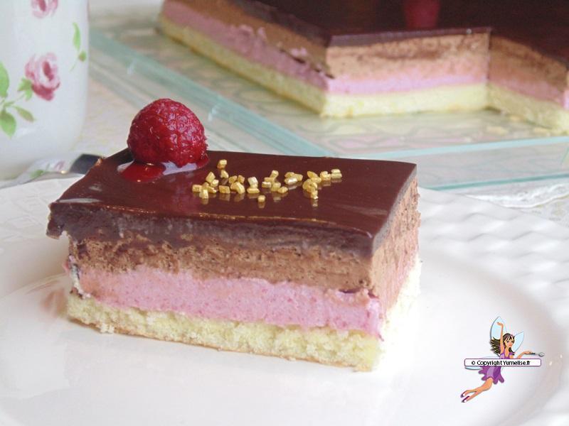 Entremet Chocolat Et Framboise Yumelise Recettes De Cuisine