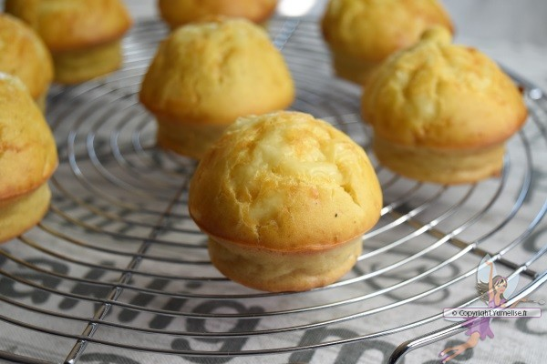 muffins au fromage et pomme