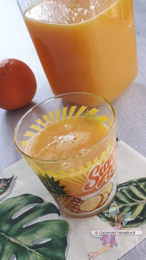 Jus multi fruits avec l extracteur de jus yumelise - Extracteur jus de fruit ...