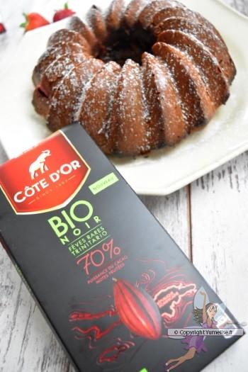 bundt cake avec le chocolat Côte d'Or bio 70% de cacao