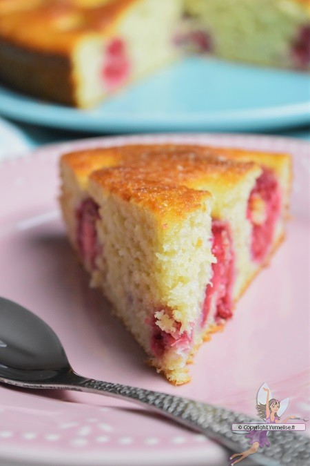 part gâteau compote rhubarbe et framboises