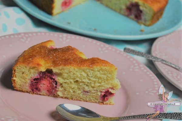 part de gâteau à la compote de rhubarbe et framboises