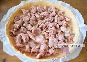 tarte et thon en morceaux au fond