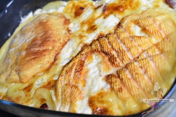 tartiflette cuite en Omnicuiseurr