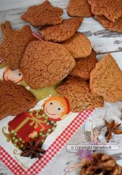 biscuits à l'Omnicuiseur