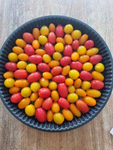 Tomates cerises de différentes couleurs